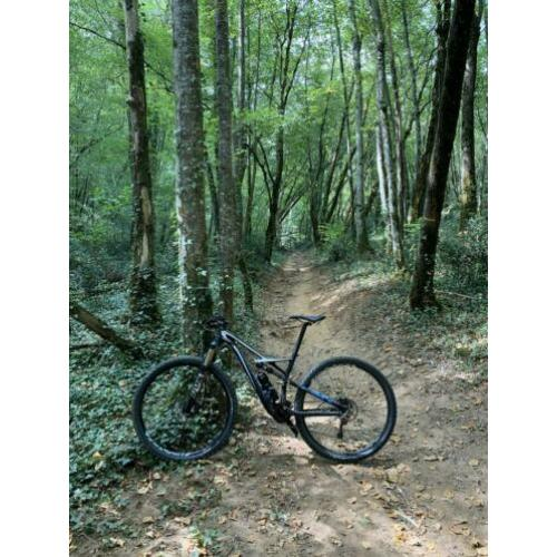 Specialized camber 29er